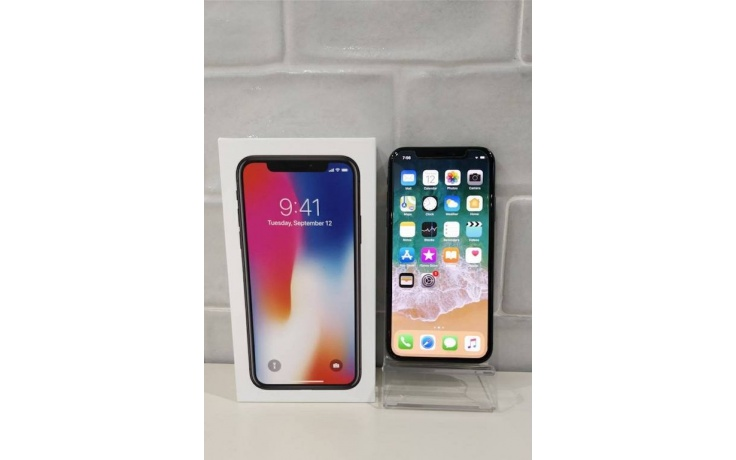 Apple iPhone X 256GB grey used