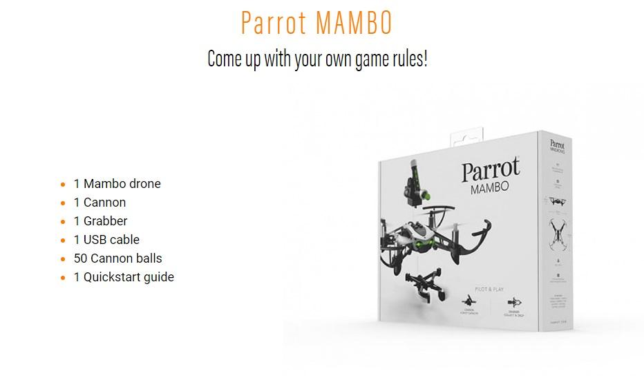 Parrot mambo singapore